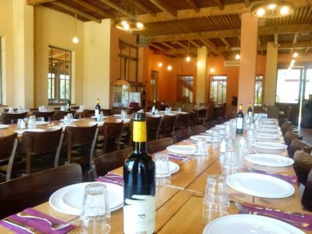 מסעדת איסקנדר-רפטינג נהר הירדן