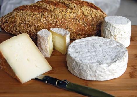 משק נעמי גבינות גורמה ויוגורטים מחלב עיזים במושב נטור רמת הגולן