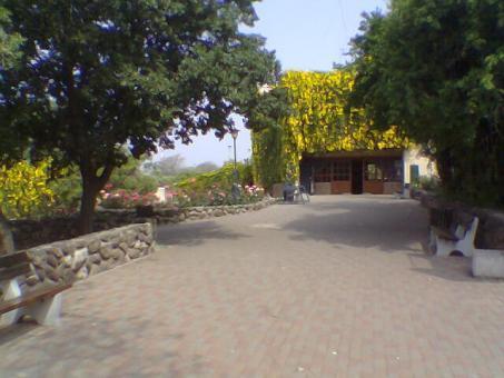 בית ספר שדה גולן - קצרין