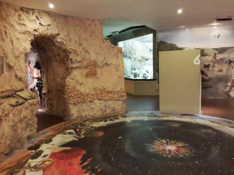 המרחב המרכזי במוזיאון
