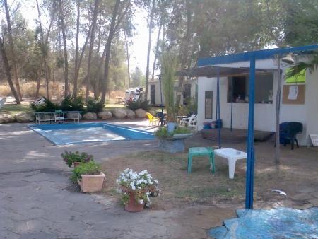 הבריכה בקיבוץ הראל