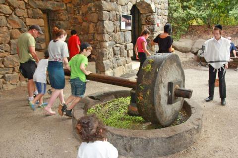 פארק קצרין העתיקה חוויה תלמודית