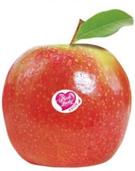 בראשית - מרכז מבקרים פירות הגולן