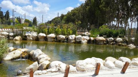 """בריכת דגים אקולוגית בפארק תע""""ש ברחוב הנצח ברמת השרון"""