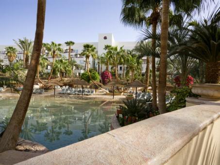 הגן במלון ישרוטל רויאל גארדן אילת