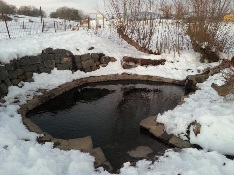 מעיין אלוני הבשן בשלג