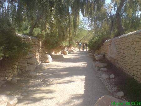 שביל הגישה לאחוזת הקבר של פולה ודוד בן גוריון בשדה בוקר