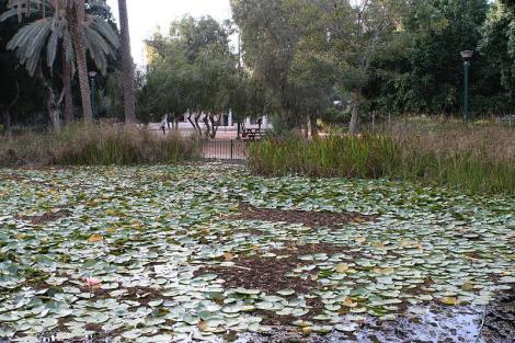 גן מאיר-תל אביב