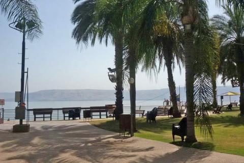 החוף השקט בטבריה - לאונרדו