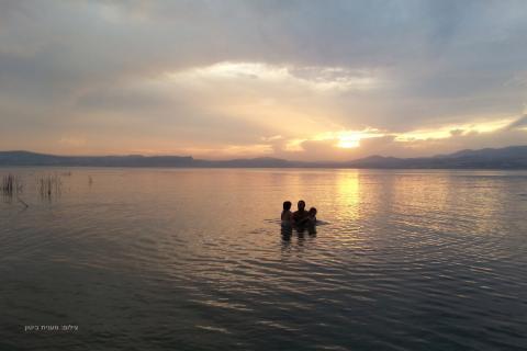 חוף צאלון בכנרת צילום: מענית ביטון