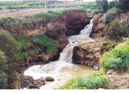 טיול גשרים בנחל חרוד