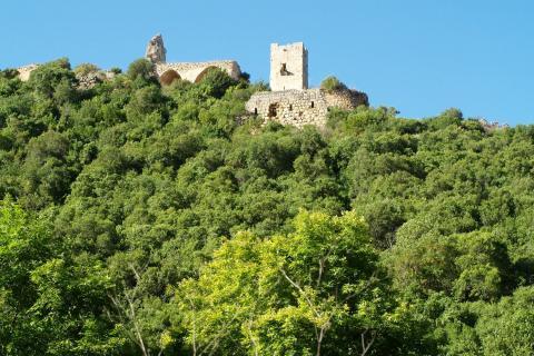 מבצר מונפורט תצפית מפארק גורן