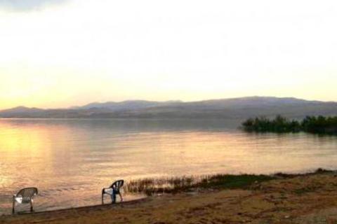חוף צאלון