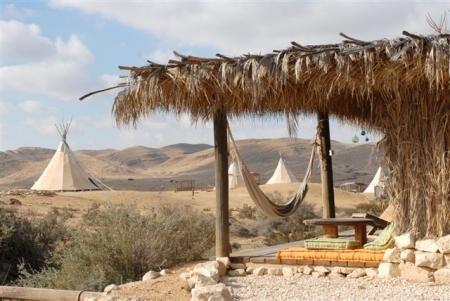 חוות זית המדבר שדה בוקר