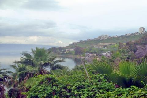 חוף ימקא בכנרת