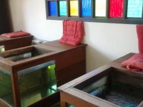 זהב ותכלת ארגמן באניעם - ספא פדיקור דגים יוגורטריה בית קפה וגלריה