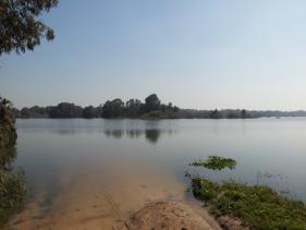 אגם שקמה