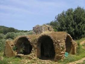 טחנת הקמח העתיקה בנחל צלמון