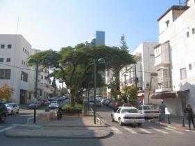 שדרות יהודית בתל אביב