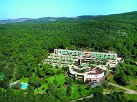 מלון אחוזת יערות הכרמל