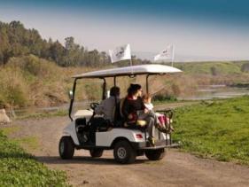 סיורים ברכב חשמלי - בינות תמרים אקולוגיקר