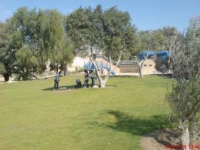 פארק גולדה