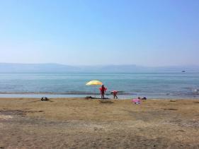 חוף דוגית כנרת