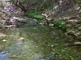 עין חרדלית בנחל כזיב ליד נהריה