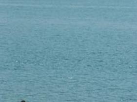 חוף עין גב