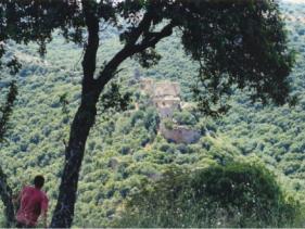 פארק גורן