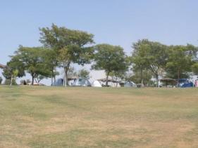 משטחי הדשא בחאן המעיינות חניון לילה גני חוגה