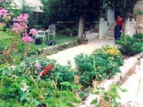 גינת בית אורן