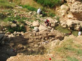 עינות פצאל בבקעת הירדן