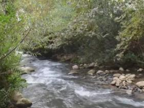 שמורת טבע נחל שניר- חצבאני- טיול ביבשה ובמים, בריכות שכשוך