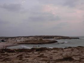 טנטורה - חוף דור
