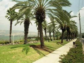 טיילת עמק הירדן