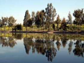 טיול בשמורת הירדן
